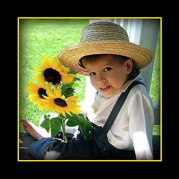 Amish Sunshine by Darlene Smithers