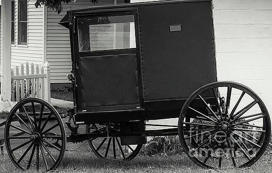Kathleen K Parker - Amish Wagon _PA