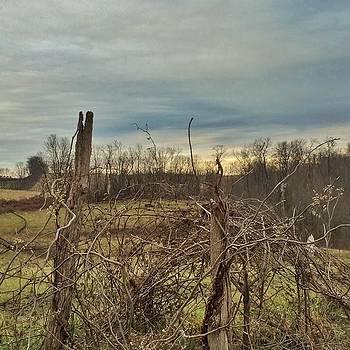 #amishcounty #ohio #ohiogram by Pete Michaud