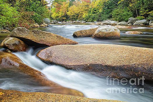Ammonoosuc River - Carroll New Hampshire  by Erin Paul Donovan