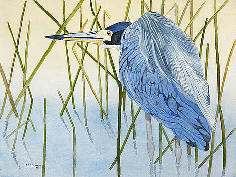 Amongst the reeds by John Edebohls