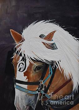 Amos - Haflinger - Horse by Jan Dappen
