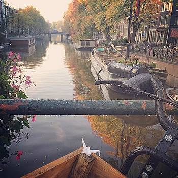 #amsterdam #1000cranes #origamicrane by Anna Harland