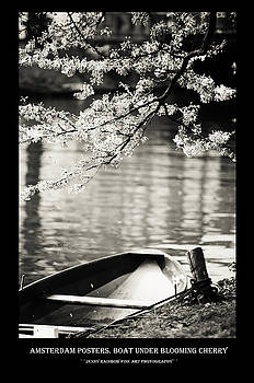 Amsterdam Posters. Boat Under Blooming Cherry by Jenny Rainbow