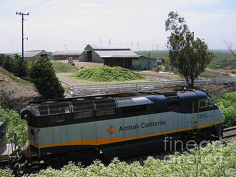 Amtrak California 2015 by James B Toy