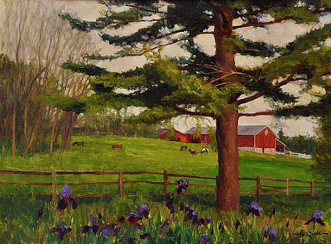 An Afternoon at Galusha Farm by Scott Harding
