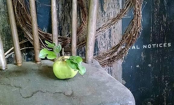 An Apple A Day... by Stephanie Calhoun