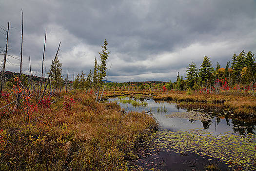 An Autumn Afternoon on Raquette Lake by David Patterson