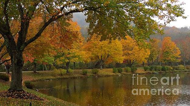 An Autumn View by Anita Adams