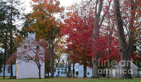 An Autumn View In Taylorsville by Anne Ditmars