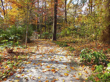 An Autumn Walk  by Hannah Underhill