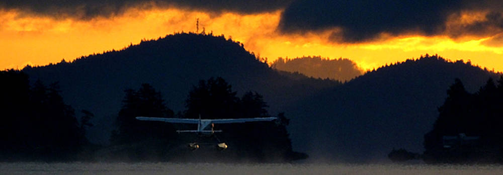 Another Early Departure by Mark Alan Perry