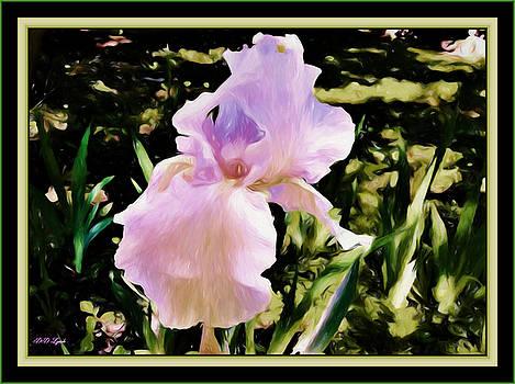 An Iris Blessing by Debra Lynch