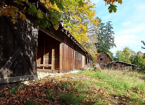 An Old Farm by Mark Alan Perry