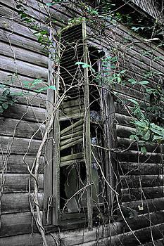 An Old Shuttered Window by Lynn Jordan
