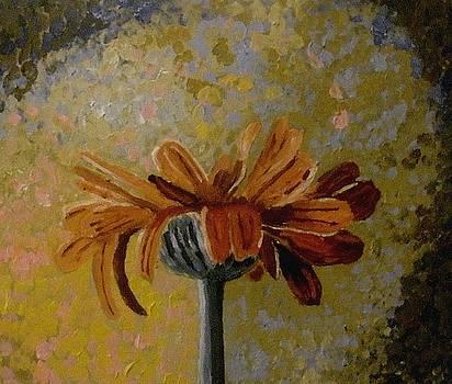 An orange flower by Mats Eriksson