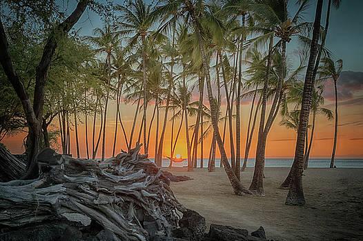 Susan Rissi Tregoning - Anaehoomalu Beach Sunset