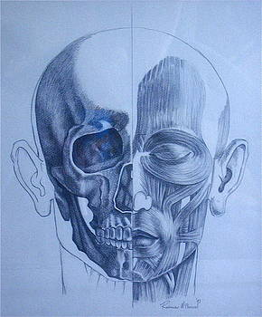 Anatomy by Rebecca Robinson