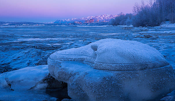 Anchorage Icebergs by Tim Newton