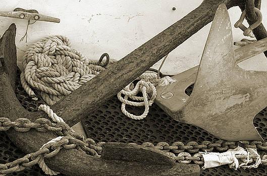 Kathi Shotwell - Anchors