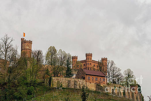 Ancient castle in Germany by Patricia Hofmeester