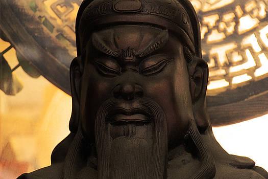 Ancient Chinese Warrior by Donna Betancourt