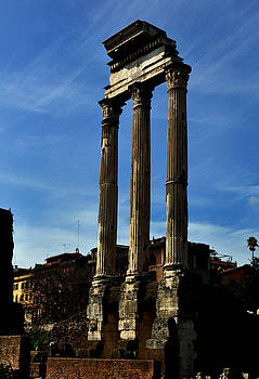 Ancient Columns in Rome by Eric Liller