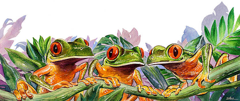 And Froggy Makes Three by Shawn Shea