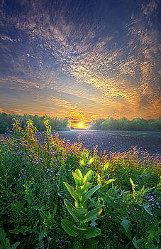 And The Hours Go By Like Minutes by Phil Koch