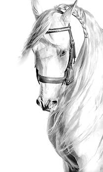 Andalusian Elegance by Athena Mckinzie