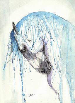 Andalusian horse 2017 01 30 by Angel Tarantella
