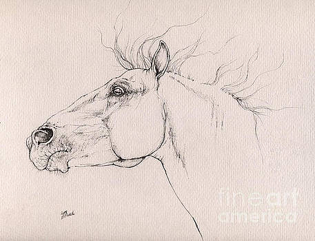 Angel Ciesniarska - Andalusian horse drawing 2015 12 0a3