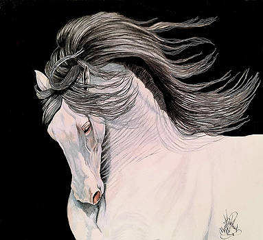 Andalusian in Color Pencil by Cheryl Poland