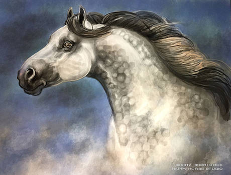 Andalusian by Sheri Cook