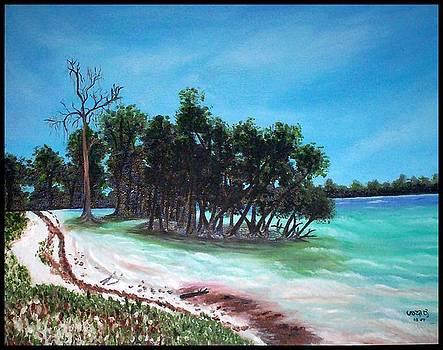 Andaman sea shore by Usha Rai