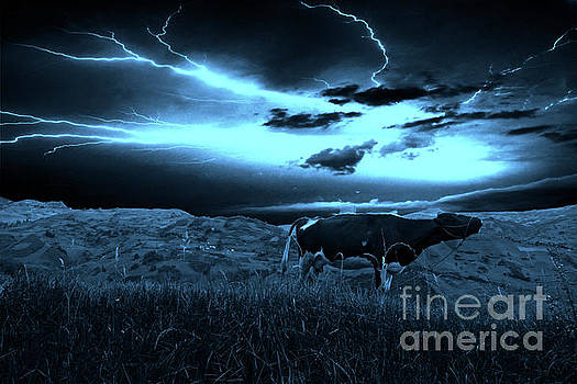 Andes Lightning Mooooves Me by Al Bourassa
