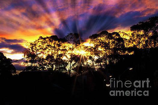 Andes Sunrise Over The Bosque De Monay by Al Bourassa