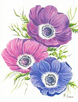 Anemones on White by Frances Evans
