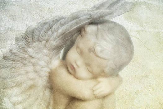 Angel by Claudia Moeckel