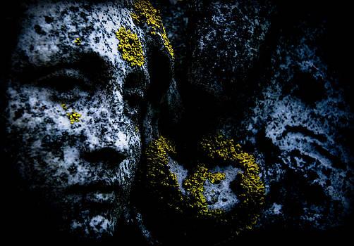 Angel Face 14 by Grebo Gray