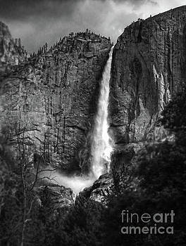 Angel Falls Yosemite by Gregory Dyer