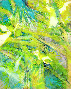 Angel Forest by Kym Nicolas