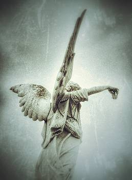 Cemetery Angel by Gia Marie Houck