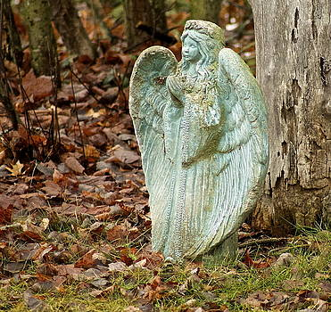 Angel in the woods by Danielle Allard