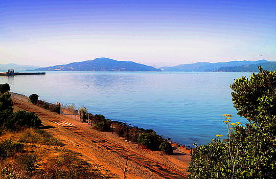 Angel Island by Joyce Dickens