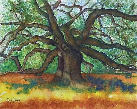 Angel Oak Take 1 by Barb Toland