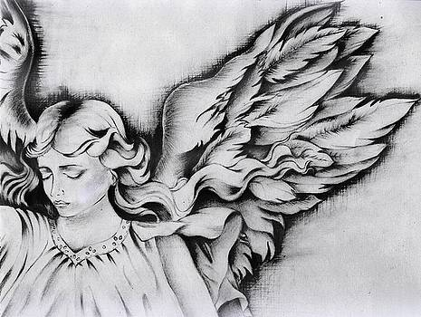 Angel Wings by Monica Magallon