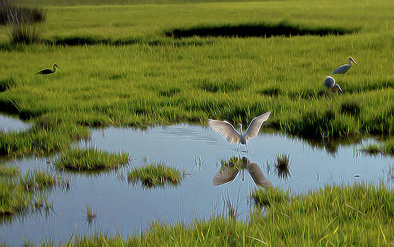 Angelic Reflection by William Horden