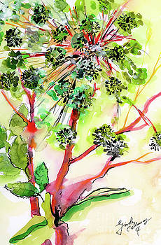 Ginette Callaway - Angelica Modern Herb Watercolor and Ink