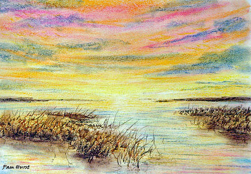 Angel's Flyway by Pam Hurst